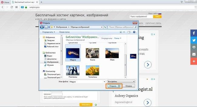 Бесплатный хостинг для фотографий и файлов как залить файл php на хостинге